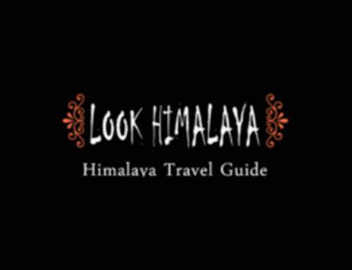 Look Himalaya WordPress Travel Blog Site